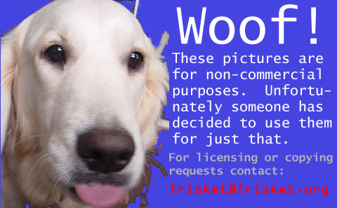 Error image for people who use Frisket's pictures for purposes she does not approve of